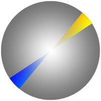 klassifikacia-cvetov3