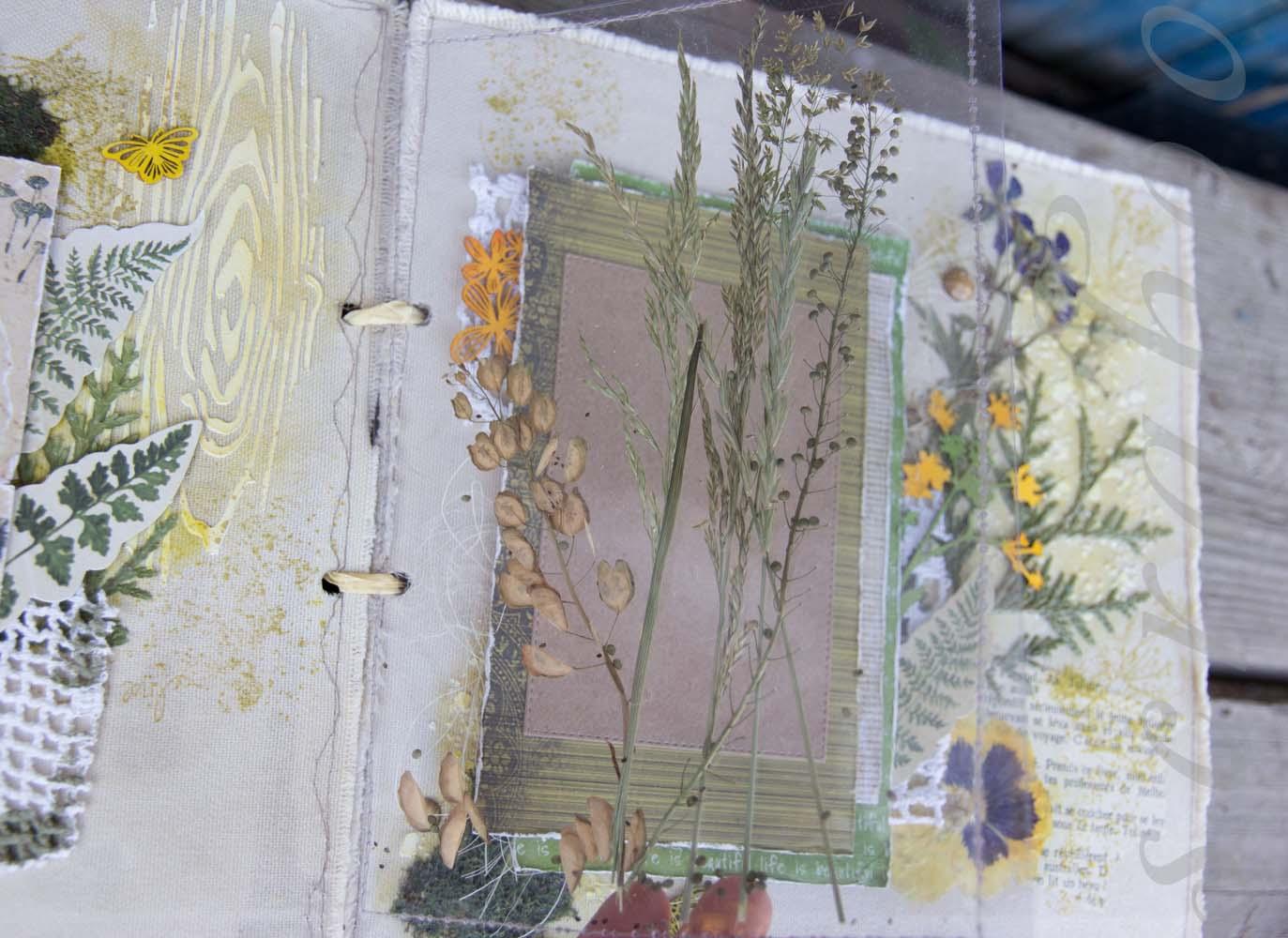 Сухоцветы в скрапбукинге